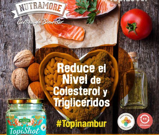 Community Manager de Nutramore Topinambur Chile
